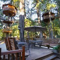Several of the treehouses sitting perched high above the lodge deck patio.- Out'N'About Treehouse Resort