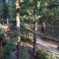 Accessing some of the taller treehouses requires crossing a series of suspension bridges.- Out'N'About Treehouse Resort