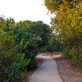 Many of the paths can provide shade most of the day.- Nipomo Native Garden Loop