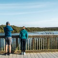Bird watchers taking in the sites.- Oso Flaco Lake Trail