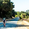 Even on a weekday, you're likely to see a fellow cyclist on the road.- Foxen Canyon Cycle + Wine Tour