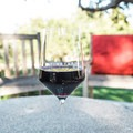 Don't forget to reward yourself with a glass of wine!- Foxen Canyon Cycle + Wine Tour