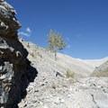 Rock walls of Boulder Canyon.- Boulder Canyon Trail