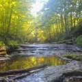 McCormick's Creek is especially beautiful during the fall when the leaves change colors.- McCormick's Creek State Park