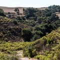 Although generally an easy ride, there are some steep and sandy trails. - Los Flores Ranch Park