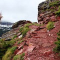 The rock along Triple Divide Trail consists of bright red shale, making for gorgeous contrasting views with the lush green forests and patches of bright white snow.- Triple Divide Peak