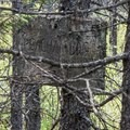 An old Peacham Bog sign located just off the trail.- Peacham Bog Loop Trail
