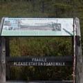 Peacham Bog informational sign.- Peacham Bog Loop Trail