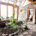 Inside the earthship. Bathroom to the right, garden in the center.- Earthship Patagonia Hostel