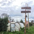 The hostel has two greenhouses on the property.- Earthship Patagonia Hostel