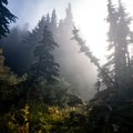 The mist begins to rise in the morning as the trail heads upward toward Ossa.- Mount Ossa Meadows