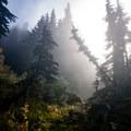 Morning mist burning off above camp.- Mount Ossa Scramble: Northwest Ridge
