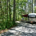 Typical site at Point Lookout State Park Campground.- Point Lookout State Park Campground
