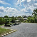 Waterfront site at Point Lookout State Park Campground.- Point Lookout State Park Campground