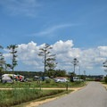 Waterfront camping loop.- Point Lookout State Park Campground