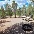 Typical campsite in Campground B.- Beaver Dam State Park Campgrounds A + B