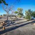 Some sites sit with views of Lake Lahontan.- Silver Springs Beach #7 Campground