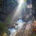 Later afternoon sun beams in the gorge.- Gorge Trail