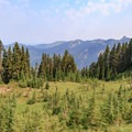 As the trail crests the ridge, meadows and views become more abundant.- Goat Rocks Thru-hike