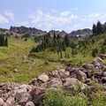 Johnson Peak above with the cascading meadow and headwaters of the Glacier Creek below.- Goat Rocks Thru-hike