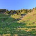 Evening light on the cascading meadows of south Johnson Peak cirque.- Goat Rocks Thru-hike