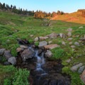Headwaters of Johnson Creek pour through the meadow alongside an ideal backcountry campsite.- Goat Rocks Thru-hike