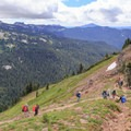 Hikers and horseback riders converge at the Lilly Basin/Goat Ridge Trail junction.- Goat Rocks Thru-hike