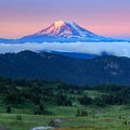 Alpenglow on Mount Adams above a sweeping meadow along the PCT.- Goat Rocks Thru-hike