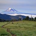 The PCT descends south toward Mount Adams.- Goat Rocks Thru-hike