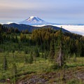 Mount Adams above the Snowgrass Creek spring from a campsite along the PCT.- Goat Rocks Thru-hike