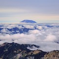 Mount Saint Helens above the clouds from the western slopes of Old Snowy Mountain.- Goat Rocks Thru-hike