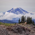 An ideal campsite with a view along the PCT with Mount Adams in the background.- Goat Rocks Thru-hike