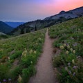 Darkness falls on the PCT and the Cispus Basin wildflower meadow with Mount St. Helens far on the horizon.- Goat Rocks Thru-hike