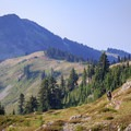 The PCT descends south out of the Goat Rocks alpine over a saddle.- Goat Rocks Thru-hike