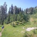 The Nannie Ridge Trail.- Goat Rocks Thru-hike