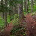 Switchbacks up the ridge.- Pechuck Lookout
