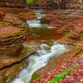 Some of the many cascades in the gorge. - Watkins Glen State Park Campground