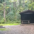One of the primitive cabins. All have a fire ring and picnic table. - Watkins Glen State Park Campground