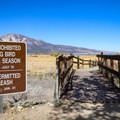 A gravel path to an observation deck is open year round, yet there are restrictions on dogs due to bird and waterfowl nesting cycles.- Wetlands Loop