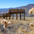The observation deck on the Wetlands Loop Trail.- Washoe Lake State Park