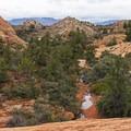Juniper and pinion pine dot the area.- The Vortex via Lower Sand Cove Trail