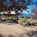 Picnic area near the loop trails.- Washoe Lake State Park