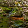 One of the small creeks. - North Point Mountain via Escarpment + Marys Glen Trails