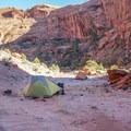 Campsite in Upper Choprock Canyon- Silver Falls Creek / Choprock Canyon Loop
