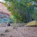 Camping in Harris Wash- Silver Falls Creek / Choprock Canyon Loop