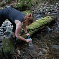 The creek is a marvelous spot to take a drink.- Needle Peak