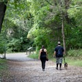 Numerous trails lead to canyons and scenic overlooks. - Starved Rock State Park