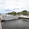 The park offers boat tours of the Crystal River beginning right outside the visitor center.- Crystal River Preserve State Park
