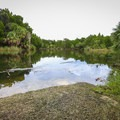 Mullet Hole is a popular area for fishing and spotting wildlife.- Crystal River Preserve State Park