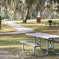 Lake Griffin State Park's day-use area features a collection of picnic tables and fishing benches beneath the scenic moss-covered live oaks.- Lake Griffin State Park